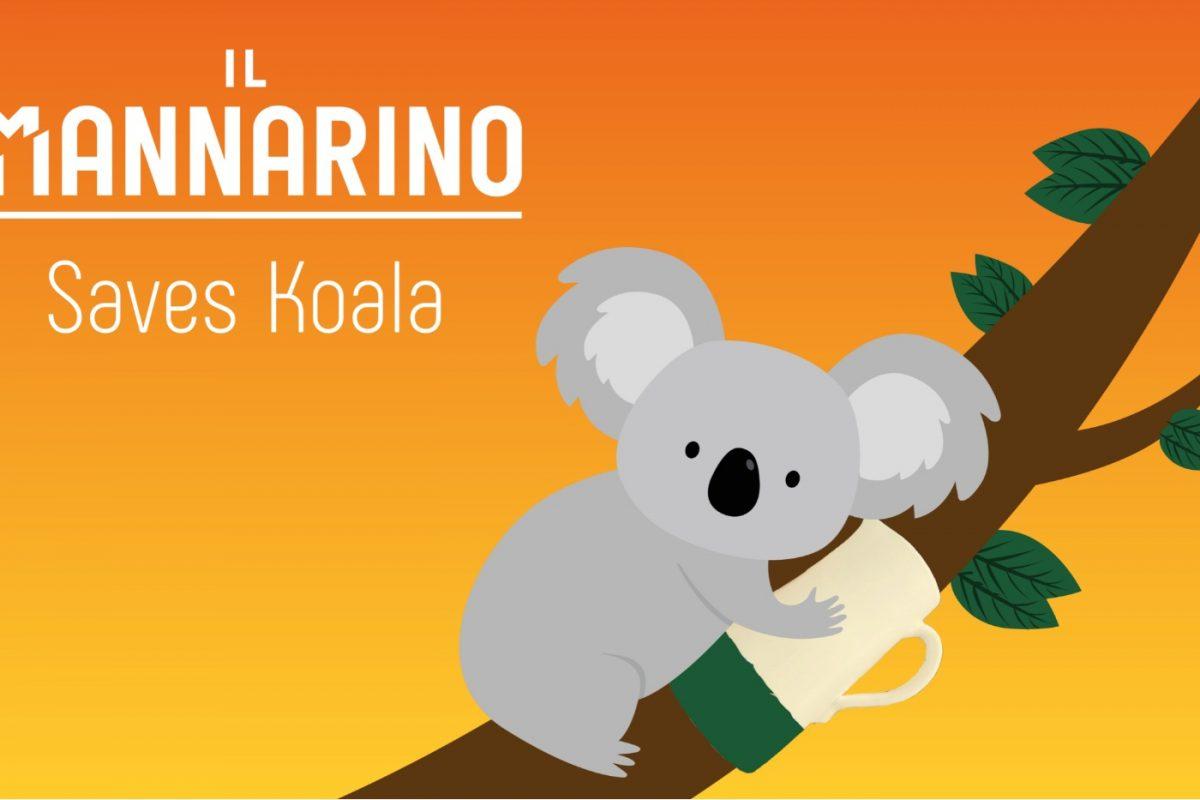 il mannarino koala